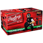 Rawlings Catchers Set Ages 10-14