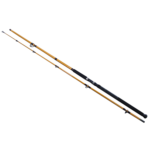 Daiwa FT Surf Spinning Rod FT Surf 2pc LnWt 10-25