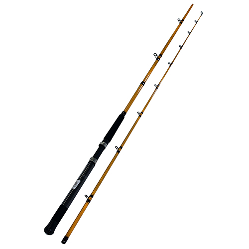 Daiwa FT Trolling Rod FT Trolling 2pc LnWt 12 - 30