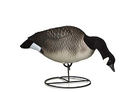 Dakota Decoy Xtreme Flocked Lesser Feeder Goose Decoys