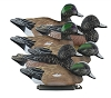 Higdon Decoys Standard Widgeon