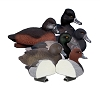 Higdon Decoys Standard Diver Pack - Foam Filled - 2 Bluebill - 2 Red Heads - 2 Ringnecks