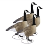 Higdon Decoys GIANT TruSentry Full Body Canada