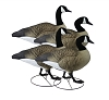 Higdon Decoys GIANT TruWalker Full Body Canada