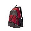 Mizuno Momentum Volleyball Backpack