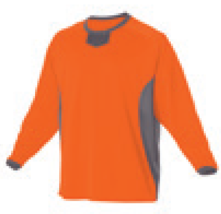 separation shoes 2b84a 5a08e Alleson Youth Long Sleeve Pullover Practice Baseball Jersey 598BBLY