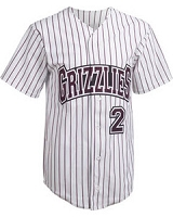 Teamwork Athletic Adult Splitter Full Button Pinstripe Baseball Jersey