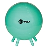Champion 42 Cm FitPro Balls with Stability Legs