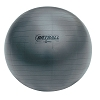 Champion 95 Cm Fitpro Brt Training & Exercise Ball