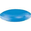 Champion 14 Inch Exercise Disc