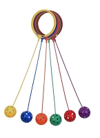 Champion Swing Ball Set