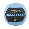 Champion Mini Rhino 6 Lb Promax Medicine Ball