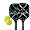 Champion 2 Player Alum Pickle Ball Set