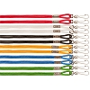 Champion Heavy Nylon Lanyard On Display Card Assorted Colors