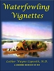 Waterfowling Vignettes by Dr. Wayne Capooth