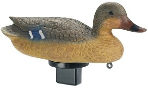 Quiver Duck